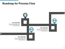 Roadmap For Process Flow Ppt Powerpoint Presentation Model Summary