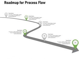 Roadmap For Process Flow Ppt Powerpoint Presentation Portfolio Icon