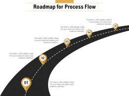Roadmap For Process Flow Ppt Powerpoint Presentation Show Shapes