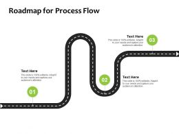Roadmap For Process Flow Roadmap Ppt Powerpoint Presentation Pictures