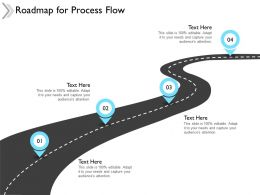Roadmap For Process Flow Timeline F651 Ppt Powerpoint Presentation Model
