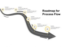 Roadmap For Process Flow Timeline I424 Ppt Powerpoint Presentation Professional