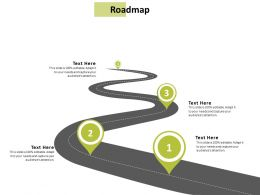 Roadmap Strategy Management C909 Ppt Powerpoint Presentation Summary Outfit