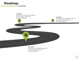 Roadmap Three Process C1167 Ppt Powerpoint Presentation Gallery Skills