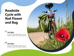 Roadside Cycle With Red Flower And Bag