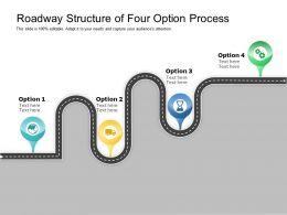 Roadway Structure Of Four Option Process