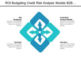 Roi Budgeting Credit Risk Analysis Models B2b Services Cpb