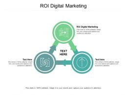 ROI Digital Marketing Ppt Powerpoint Presentation Slides Gallery Cpb
