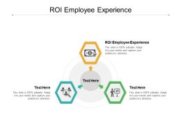 ROI Employee Experience Ppt Powerpoint Presentation Model Guidelines Cpb