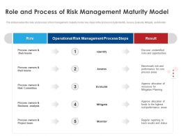 Role And Process Of Risk Management Maturity Model Ppt Designs