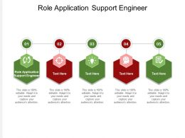 Role Application Support Engineer Ppt Powerpoint Presentation Icon Outline Cpb