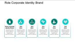 Role Corporate Identity Brand Ppt Powerpoint Presentation Ideas Rules Cpb