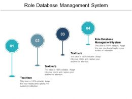 Role Database Management System Ppt Powerpoint Presentation Infographic Template Cpb