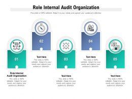 Role Internal Audit Organization Ppt Powerpoint Presentation Ideas Skills