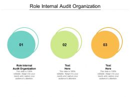 Role Internal Audit Organization Ppt Powerpoint Presentation Styles Designs Cpb