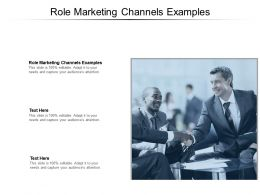 Role Marketing Channels Examples Ppt Powerpoint Presentation Summary Examples Cpb