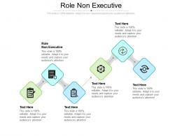 Role Non Executive Ppt Powerpoint Presentation Styles Template Cpb