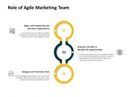 Role Of Agile Marketing Team Expectations Ppt Powerpoint Presentation Model Layouts