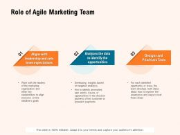 Role Of Agile Marketing Team Ppt Powerpoint Presentation Portfolio Graphics