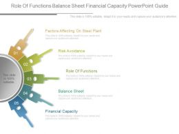 Role Of Functions Balance Sheet Financial Capacity Powerpoint Guide