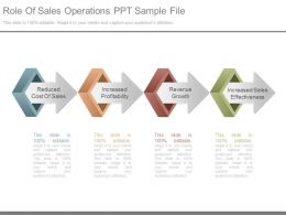 Role Of Sales Operations Ppt Sample File
