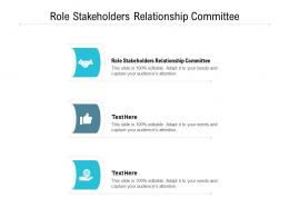 Role Stakeholders Relationship Committee Ppt Powerpoint Presentation Outline File Cpb