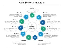 Role Systems Integrator Ppt Powerpoint Presentation Ideas Mockup Cpb