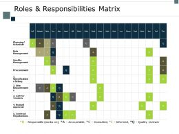 Roles And Responsibilities Matrix Budget Ppt Powerpoint Presentation Outline Picture