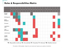 Roles And Responsibilities Matrix Ppt Powerpoint Presentation Summary Graphics Example