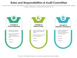Roles And Responsibilities Of Audit Committee