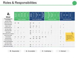 Roles And Responsibilities Ppt Summary Infographic Template