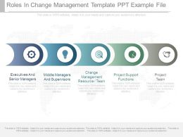 Roles In Change Management Template Ppt Example File
