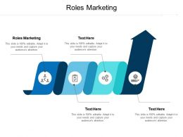 Roles Marketing Ppt Powerpoint Presentation Infographics Visual Aids Cpb