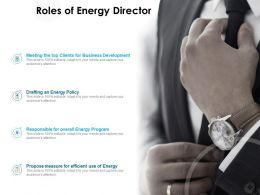 Roles Of Energy Director Business Development Ppt Presentation Pictures Graphics