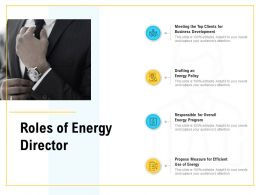 Roles Of Energy Director Cheklist Ppt Powerpoint Presentation Gallery