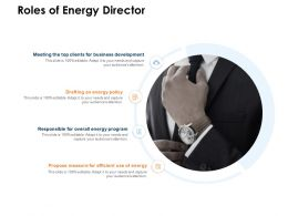 Roles Of Energy Director Ppt Powerpoint Presentation Icon Information