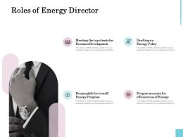 Roles Of Energy Director Ppt Powerpoint Presentation Professional Slideshow