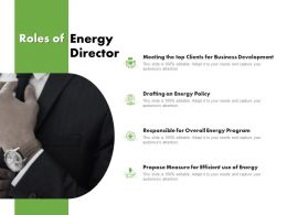 Roles Of Energy Director Ppt Powerpoint Presentation Styles Model