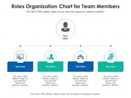Roles Organization Chart For Team Members Infographic Template