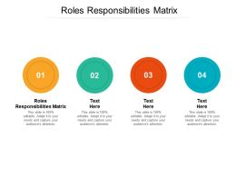 Roles Responsibilities Matrix Ppt Powerpoint Presentation Styles File Formats Cpb