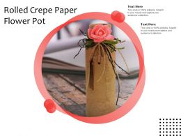 Rolled Crepe Paper Flower Pot