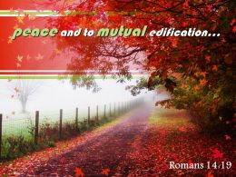 Romans 14 19 Peace And To Mutual Edification Powerpoint Church Sermon