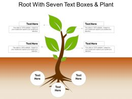 Root With Seven Text Boxes And Plant