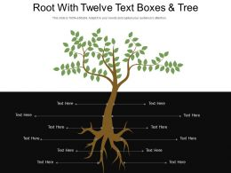 Root With Twelve Text Boxes And Tree