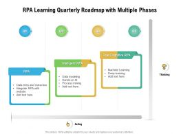 RPA Learning Quarterly Roadmap With Multiple Phases