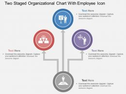 Rx Two Staged Organizational Cjhart With Employee Icon Flat Powerpoint Design