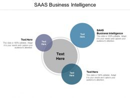 SAAS Business Intelligence Ppt Powerpoint Presentation Summary Portfolio Cpb