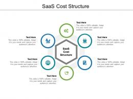 SAAS Cost Structure Ppt Powerpoint Presentation Portfolio Graphics Tutorials Cpb