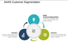 SAAS Customer Segmentation Ppt Powerpoint Presentation Layouts Graphics Cpb