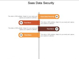 SAAS Data Security Ppt Powerpoint Presentation Summary Sample Cpb
